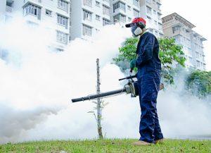 All Kill Pest Control Hero Image
